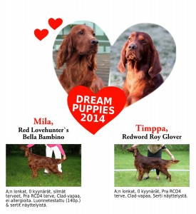 Dream_Puppies